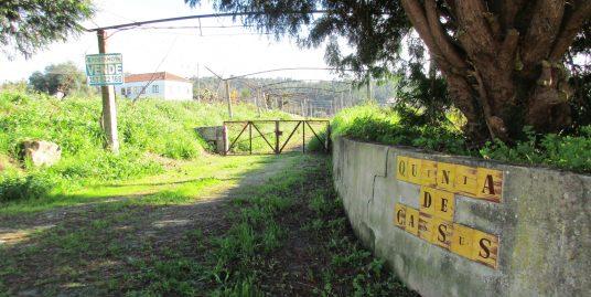 Quinta de Cassus em Fonte Coberta